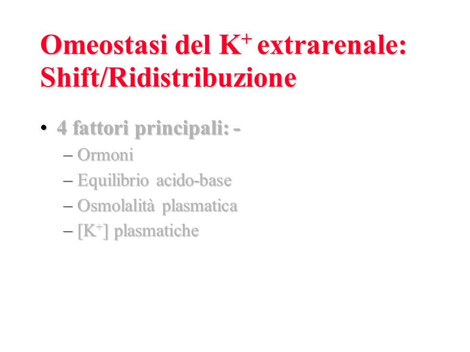 Omeostasi del K + extrarenale: Shift/Ridistribuzione 4 fattori principali: -4 fattori principali: - –Ormoni –Equilibrio acido-base –Osmolalità plasmatica –[K + ] plasmatiche