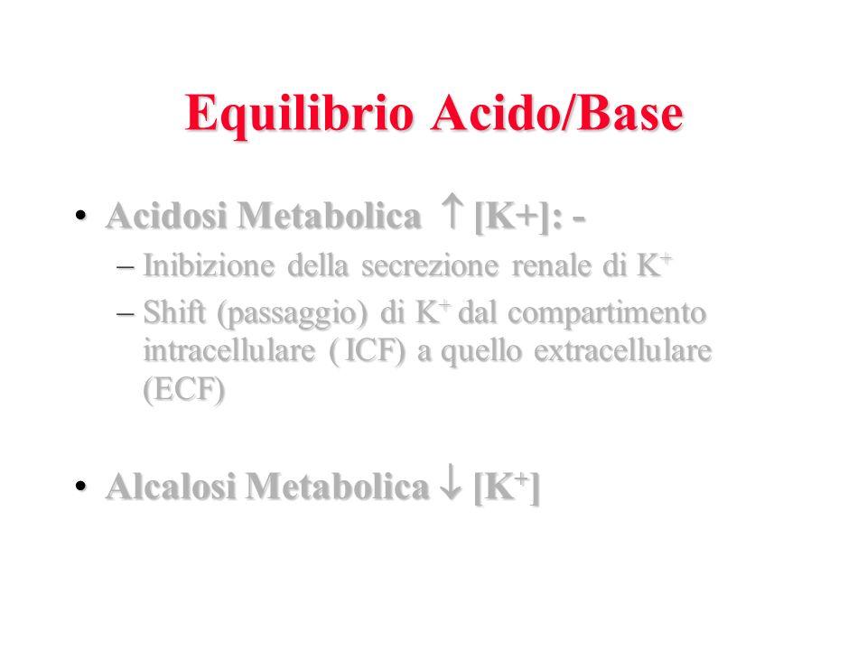 Equilibrio Acido/Base Acidosi Metabolica [K+]: -Acidosi Metabolica [K+]: - –Inibizione della secrezione renale di K + –Shift (passaggio) di K + dal compartimento intracellulare ( ICF) a quello extracellulare (ECF) Alcalosi Metabolica [K + ]Alcalosi Metabolica [K + ]