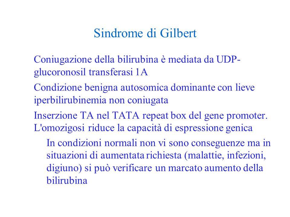 Sindrome di Gilbert Coniugazione della bilirubina è mediata da UDP- glucoronosil transferasi 1A Condizione benigna autosomica dominante con lieve iper