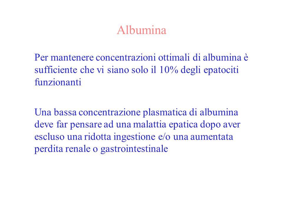Albumina Per mantenere concentrazioni ottimali di albumina è sufficiente che vi siano solo il 10% degli epatociti funzionanti Una bassa concentrazione