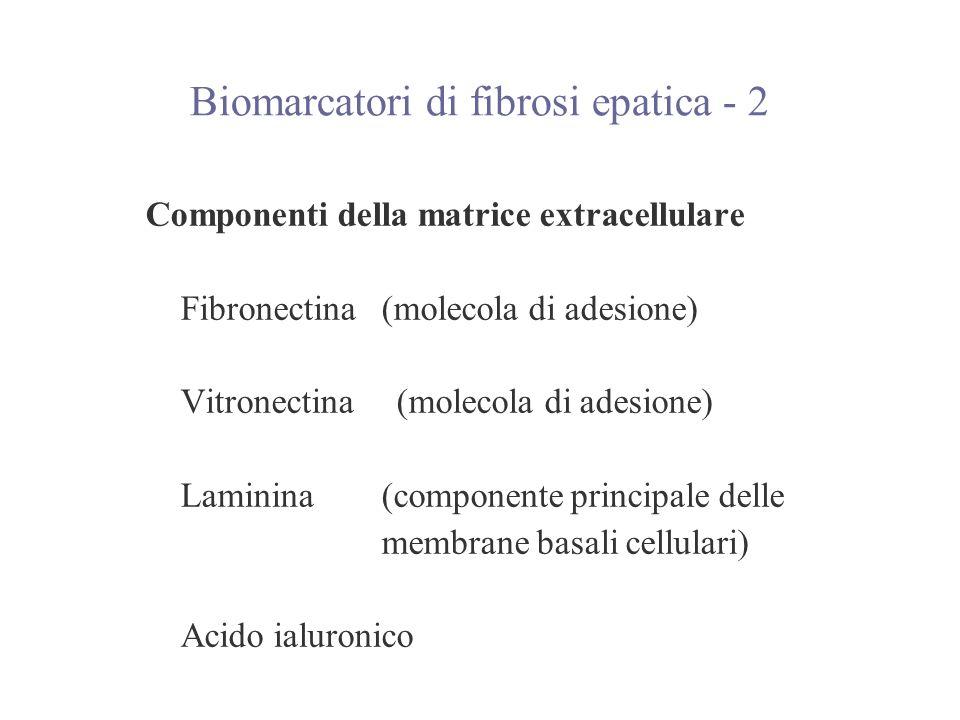 Componenti della matrice extracellulare Fibronectina (molecola di adesione) Vitronectina (molecola di adesione) Laminina(componente principale delle m