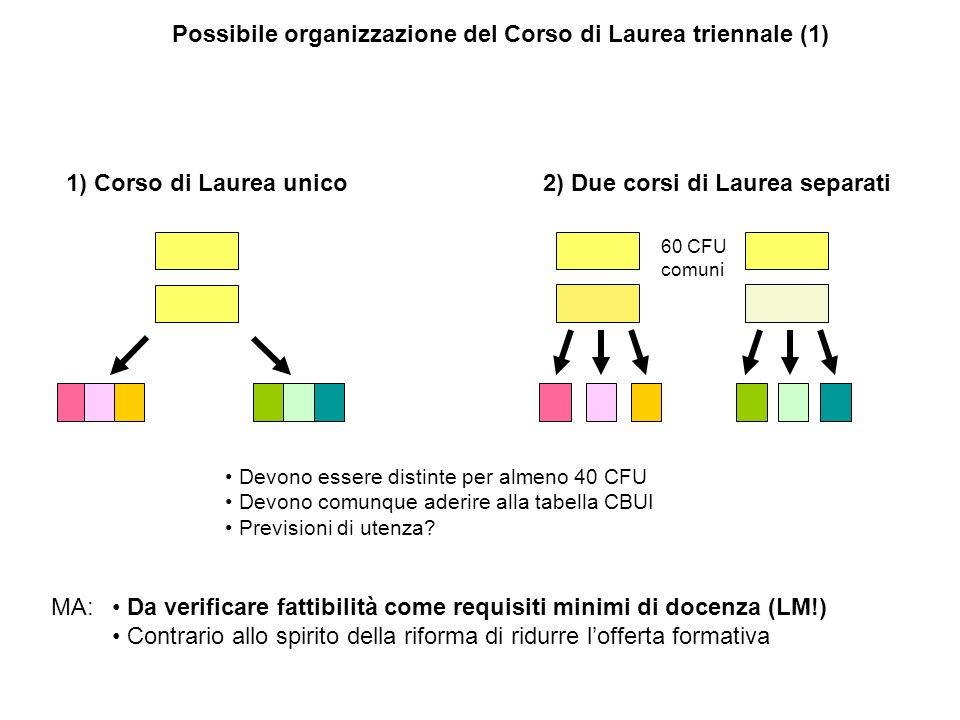 Possibile organizzazione del Corso di Laurea triennale (1) 1) Corso di Laurea unico 2) Due corsi di Laurea separati Da verificare fattibilità come req