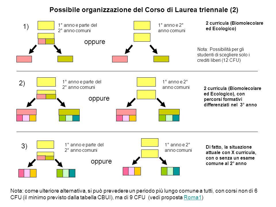 Possibile organizzazione del Corso di Laurea triennale (2) 1° anno e parte del 2° anno comuni 2 curricula (Biomolecolare ed Ecologico) Nota: Possibili