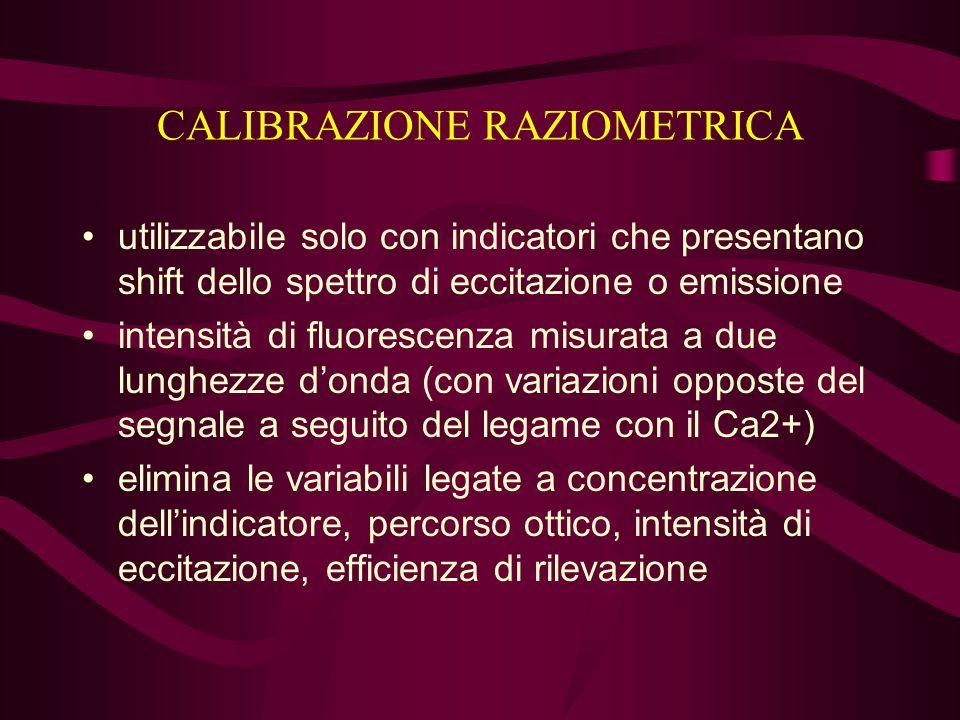 CALIBRAZIONE RAZIOMETRICA utilizzabile solo con indicatori che presentano shift dello spettro di eccitazione o emissione intensità di fluorescenza mis