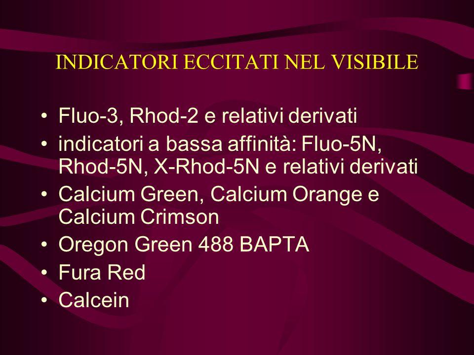 INDICATORI ECCITATI NEL VISIBILE Fluo-3, Rhod-2 e relativi derivati indicatori a bassa affinità: Fluo-5N, Rhod-5N, X-Rhod-5N e relativi derivati Calci