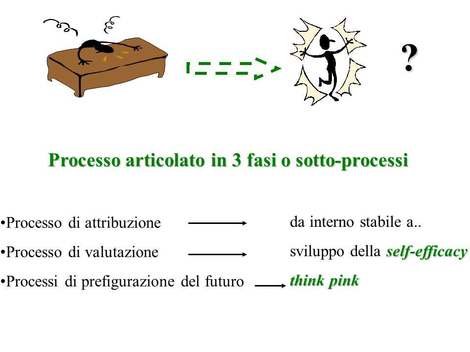 ? Processo articolato in 3 fasi o sotto-processi Processo di attribuzione Processo di valutazione Processi di prefigurazione del futuro da interno sta
