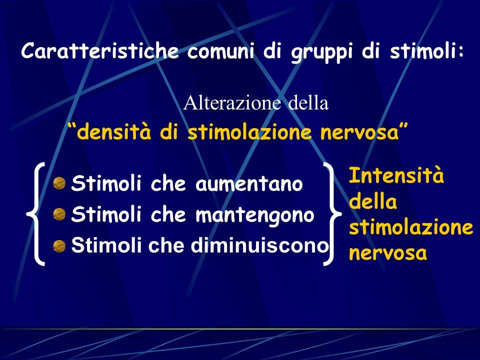 Stimoli che aumentano Stimoli che mantengono Stimoli che diminuiscono Caratteristiche comuni di gruppi di stimoli: Alterazione della densità di stimolazione nervosa Intensità della stimolazione nervosa
