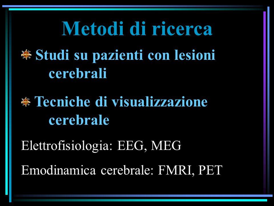 Metodi di ricerca Studi su pazienti con lesioni cerebrali Tecniche di visualizzazione cerebrale Elettrofisiologia: EEG, MEG Emodinamica cerebrale: FMRI, PET