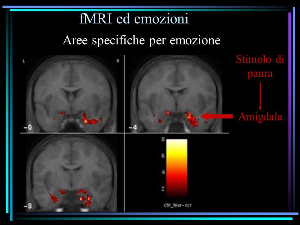 fMRI ed emozioni Amigdala Stimolo di paura Aree specifiche per emozione