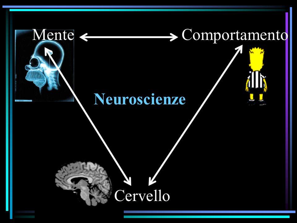 Neuroscienze MenteComportamento Cervello