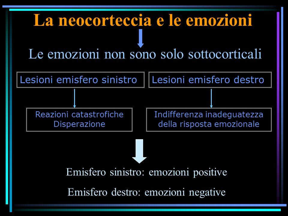 La neocorteccia e le emozioni Le emozioni non sono solo sottocorticali Lesioni emisfero sinistroLesioni emisfero destro Reazioni catastrofiche Disperazione Indifferenza inadeguatezza della risposta emozionale Emisfero sinistro: emozioni positive Emisfero destro: emozioni negative