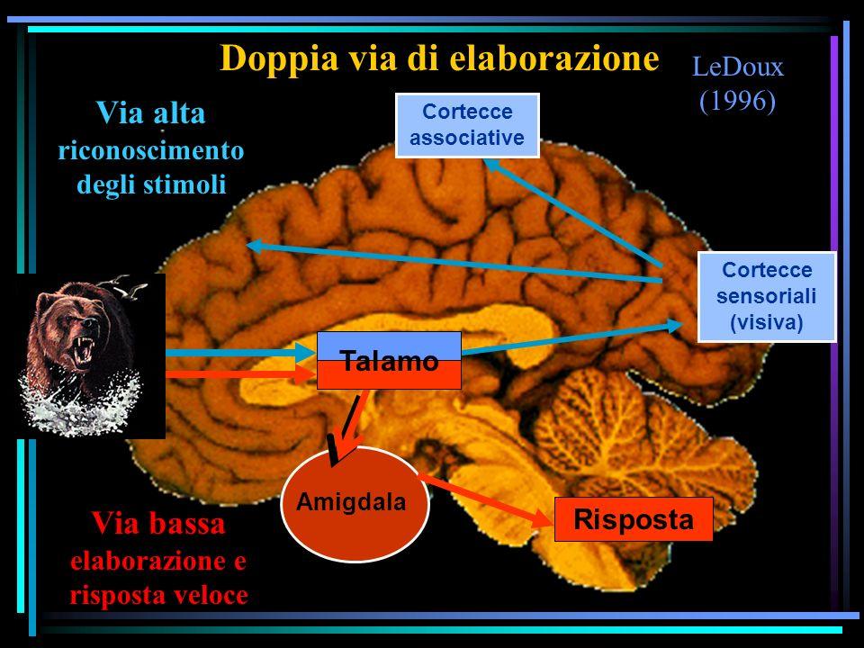 LeDoux (1996) Doppia via di elaborazione Cortecce sensoriali (visiva) Cortecce associative Amigdala Talamo Risposta Via alta riconoscimento degli stim