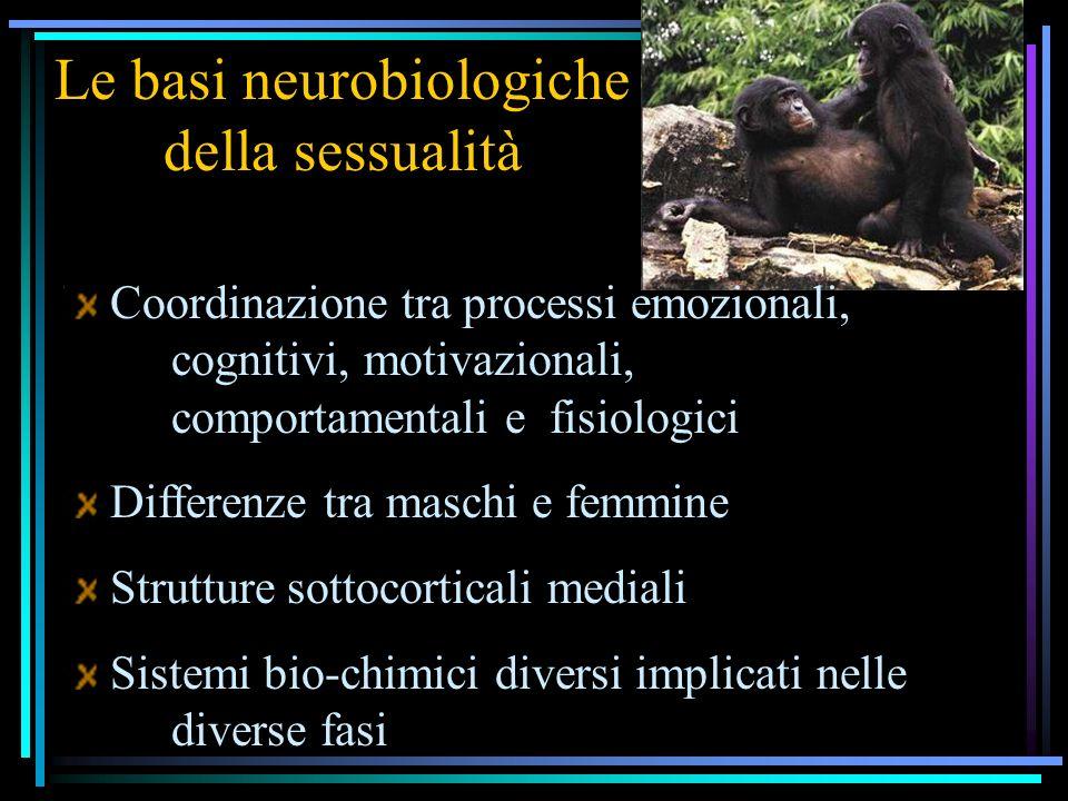 Le basi neurobiologiche della sessualità Coordinazione tra processi emozionali, cognitivi, motivazionali, comportamentali e fisiologici Differenze tra