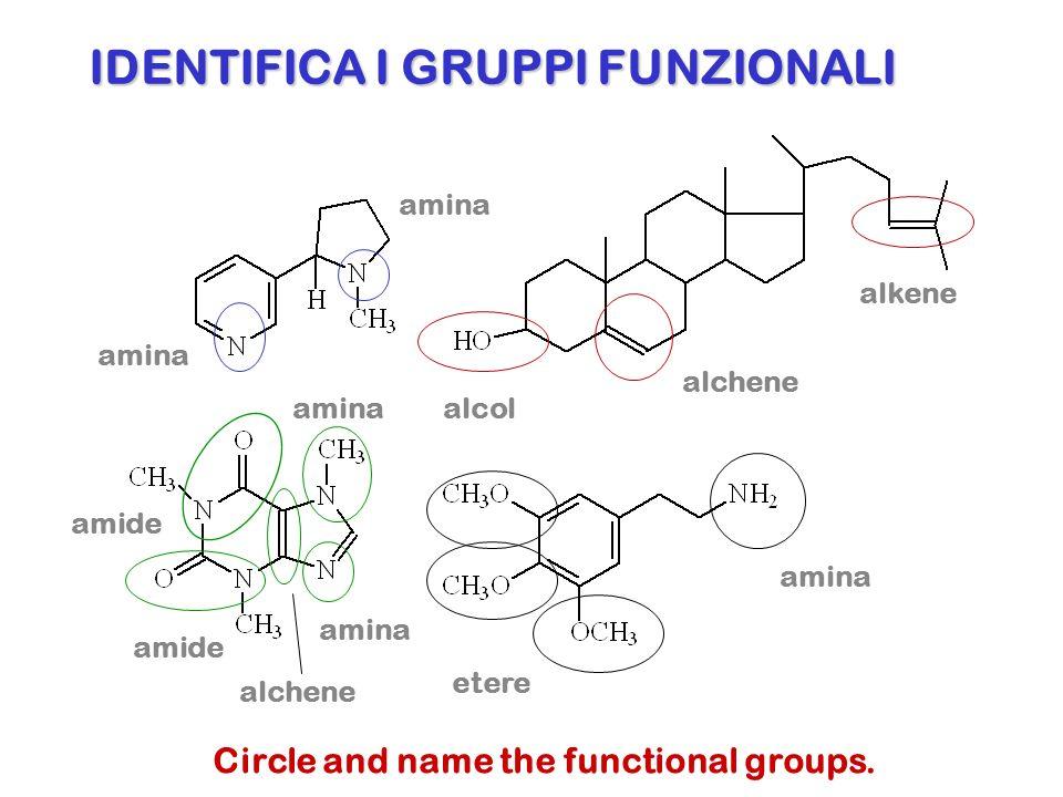 IDENTIFICA I GRUPPI FUNZIONALI Circle and name the functional groups. amina alcol alchene alkene amide alchene amina etere amina