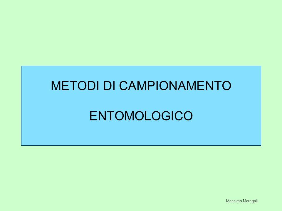 METODI DI CAMPIONAMENTO ENTOMOLOGICO Massimo Meregalli