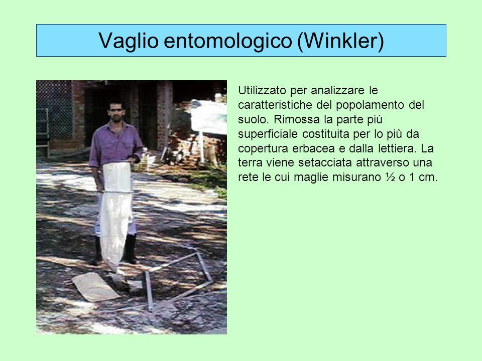 Vaglio entomologico (Winkler) Utilizzato per analizzare le caratteristiche del popolamento del suolo. Rimossa la parte più superficiale costituita per