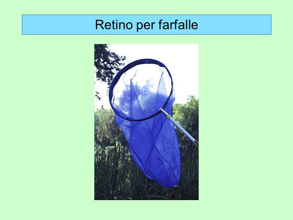 Trappole a CO 2 Utili nel caso di insetti che utilizzano lanidride carbonica come indicatore della presenza di animali: un esempio per tutti è la zanzara