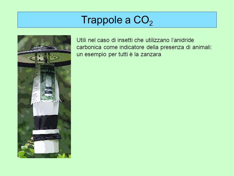Trappole a CO 2 Utili nel caso di insetti che utilizzano lanidride carbonica come indicatore della presenza di animali: un esempio per tutti è la zanz