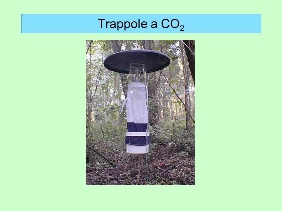 Trappole a CO 2