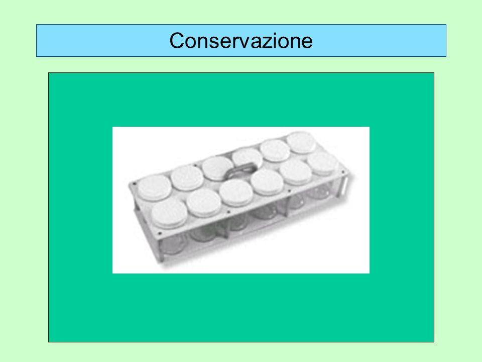 Conservazione a. Materiale cartellinato o spillato e conservato a secco: scatole entomologiche b. Materiale in alcool: flaconi a chiusura ermetica