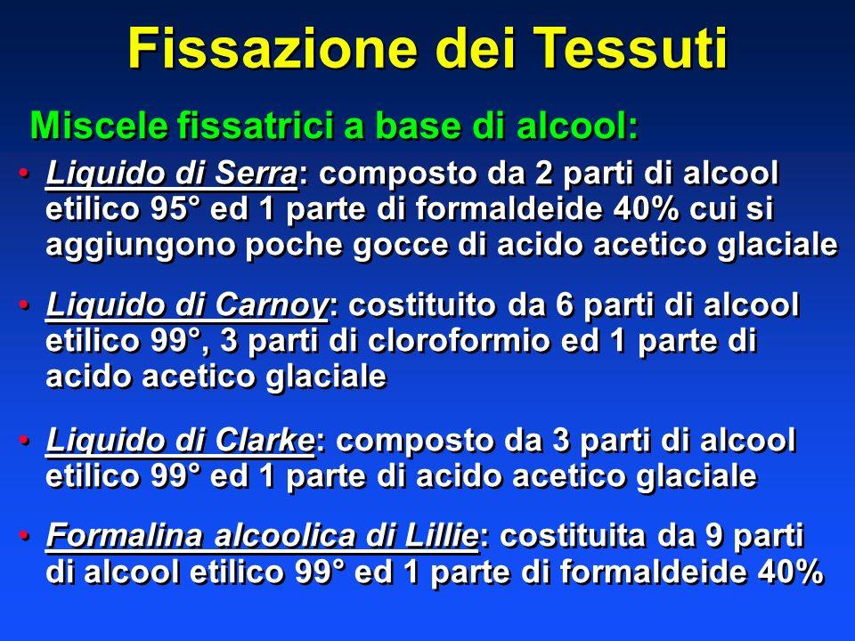 Fissazione dei Tessuti Miscele fissatrici a base di alcool: Liquido di Serra: composto da 2 parti di alcool etilico 95° ed 1 parte di formaldeide 40%