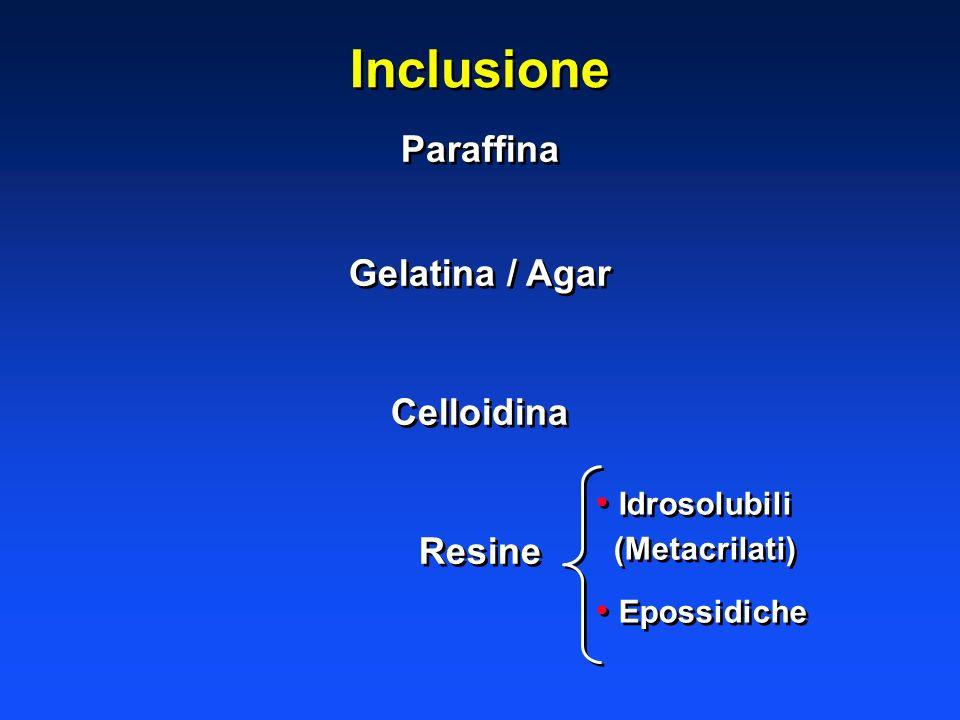 Inclusione Paraffina Gelatina / Agar Celloidina Resine Paraffina Gelatina / Agar Celloidina Resine Idrosolubili (Metacrilati) Idrosolubili (Metacrilat