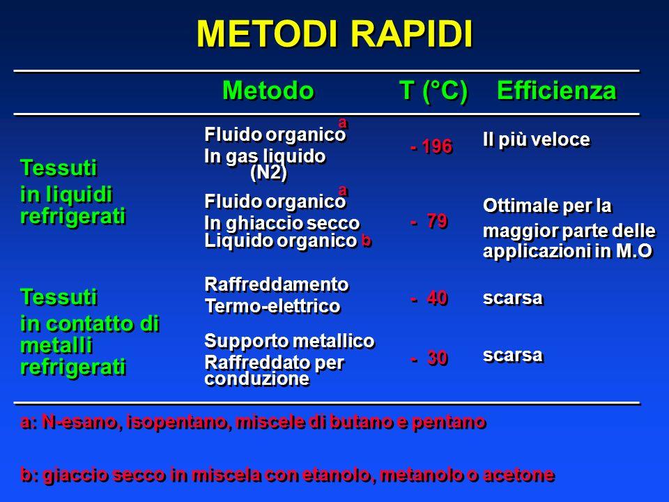 METODI RAPIDI Metodo T (°C) Efficienza Tessuti in liquidi refrigerati Tessuti in liquidi refrigerati Tessuti in contatto di metalli refrigerati Tessut