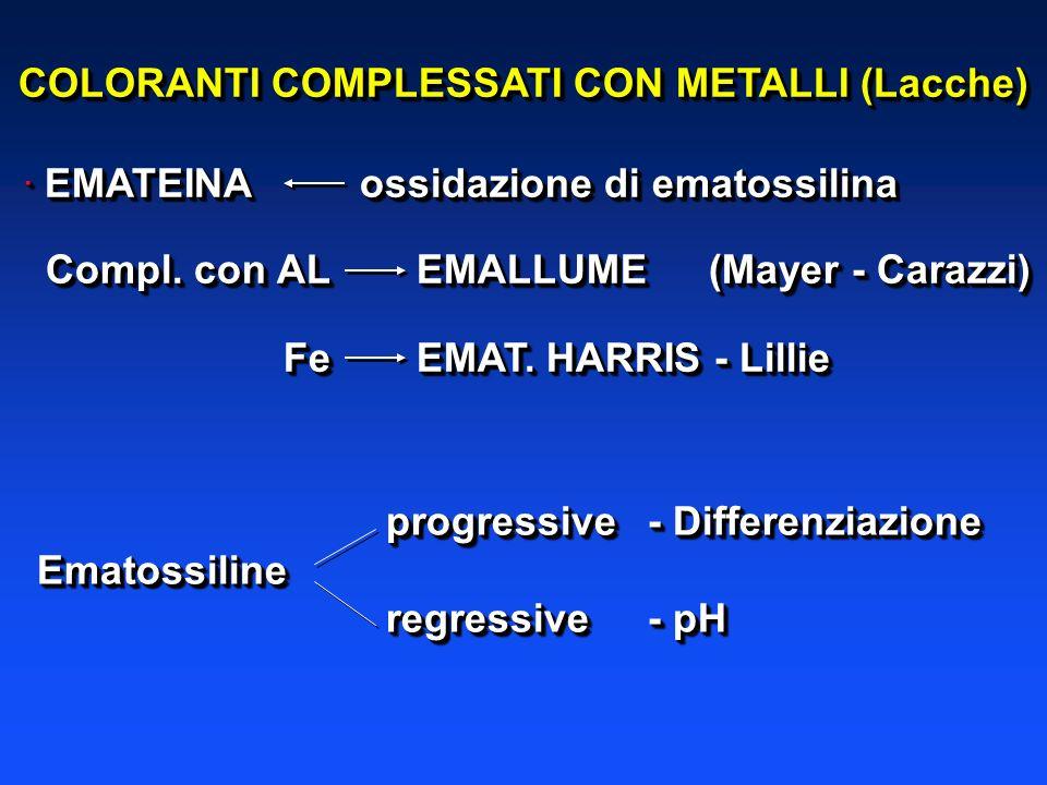 · EMATEINAossidazione di ematossilina Compl. con AL EMALLUME(Mayer - Carazzi) Compl. con AL EMALLUME(Mayer - Carazzi) Fe EMAT. HARRIS - Lillie Fe EMAT