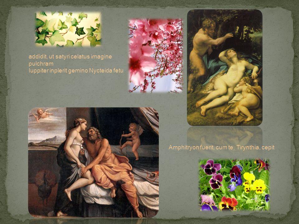 addidit, ut satyri celatus imagine pulchram Iuppiter inplerit gemino Nycteida fetu Amphitryon fuerit, cum te, Tirynthia, cepit