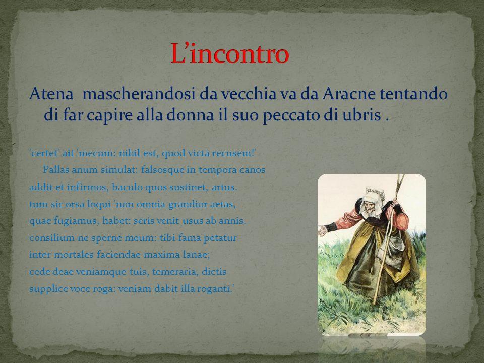 Atena mascherandosi da vecchia va da Aracne tentando di far capire alla donna il suo peccato di ubris. 'certet' ait 'mecum: nihil est, quod victa recu