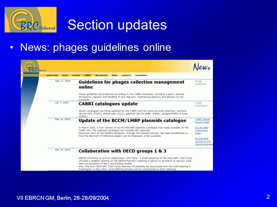 VII EBRCN GM, Berlin, 26-28/09/2004 2 Section updates News: phages guidelines online