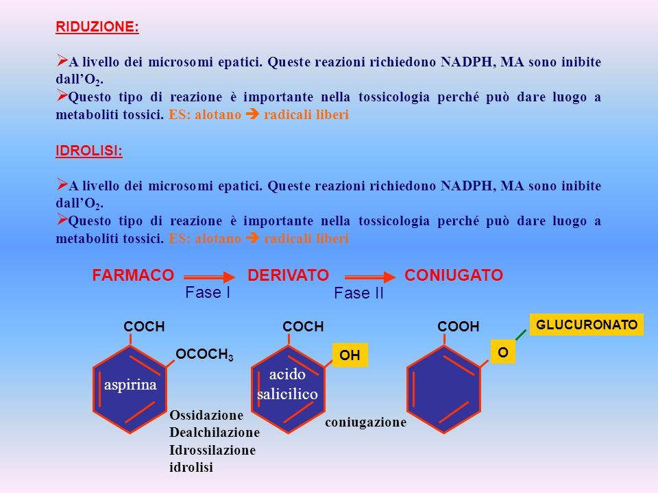 RIDUZIONE: A livello dei microsomi epatici. Queste reazioni richiedono NADPH, MA sono inibite dallO 2. Questo tipo di reazione è importante nella toss