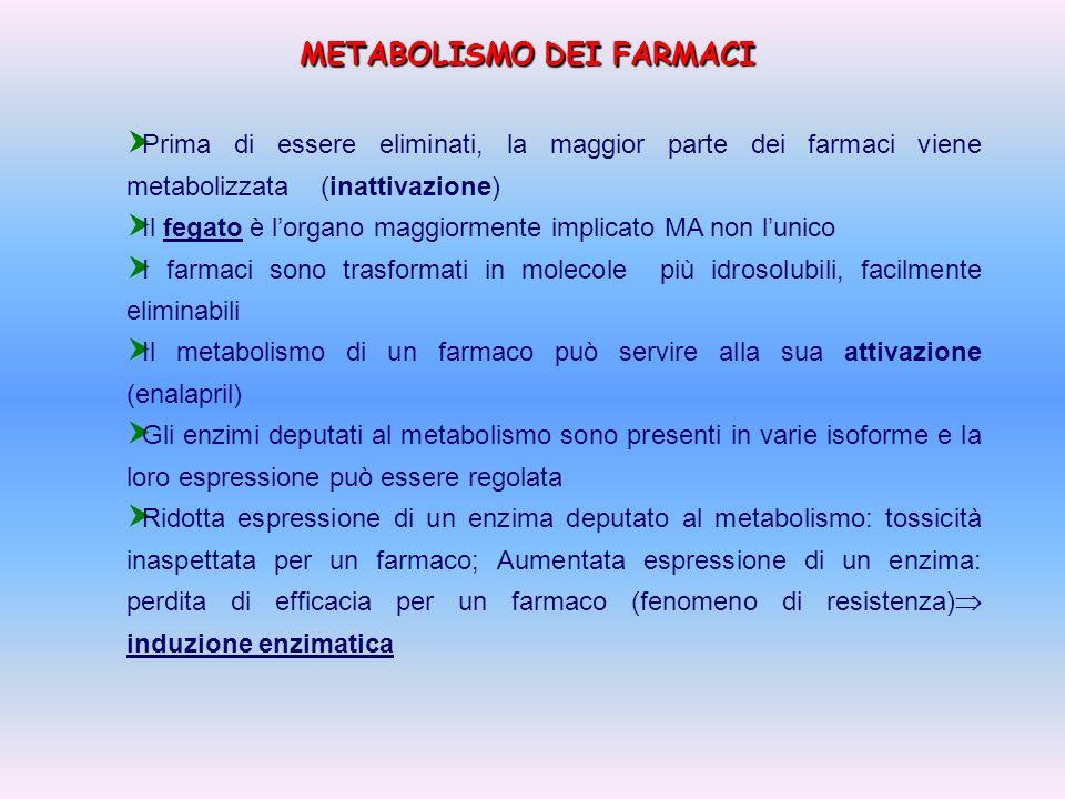 METABOLISMO DEI FARMACI Prima di essere eliminati, la maggior parte dei farmaci viene metabolizzata (inattivazione) Il fegato è lorgano maggiormente i