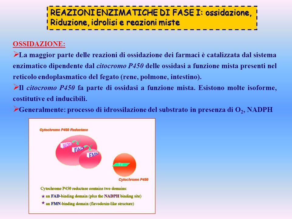 REAZIONI ENZIMATICHE DI FASE I: ossidazione, Riduzione, idrolisi e reazioni miste OSSIDAZIONE: La maggior parte delle reazioni di ossidazione dei farm