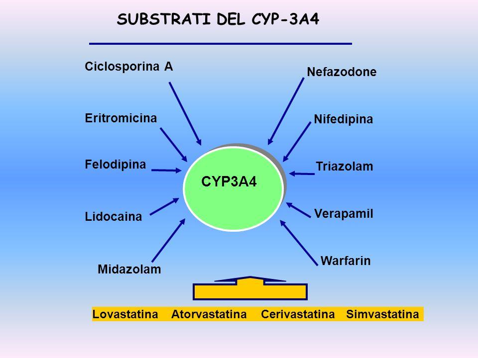 SUBSTRATI DEL CYP-3A4 CYP3A4 Ciclosporina A Eritromicina Felodipina Lidocaina Midazolam Nefazodone Nifedipina Triazolam Verapamil Warfarin Lovastatina