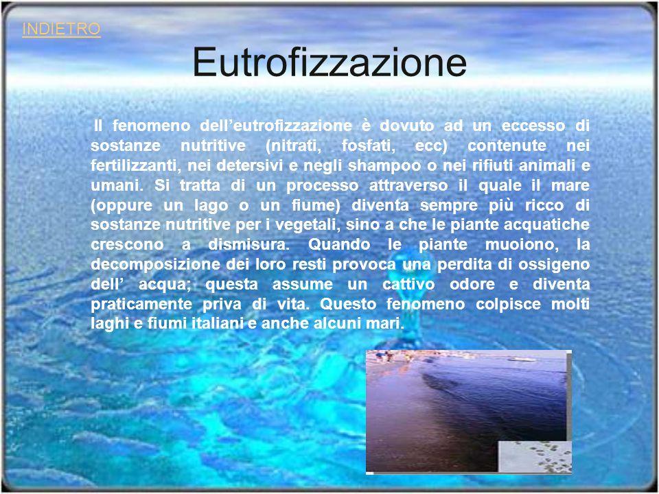 Eutrofizzazione Il fenomeno delleutrofizzazione è dovuto ad un eccesso di sostanze nutritive (nitrati, fosfati, ecc) contenute nei fertilizzanti, nei