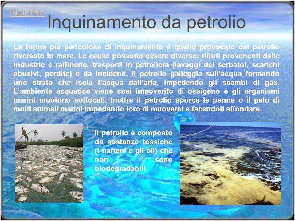 Inquinamento da petrolio INDIETRO La forma più pericolosa di inquinamento è quello provocato dal petrolio riversato in mare. Le cause possono essere d