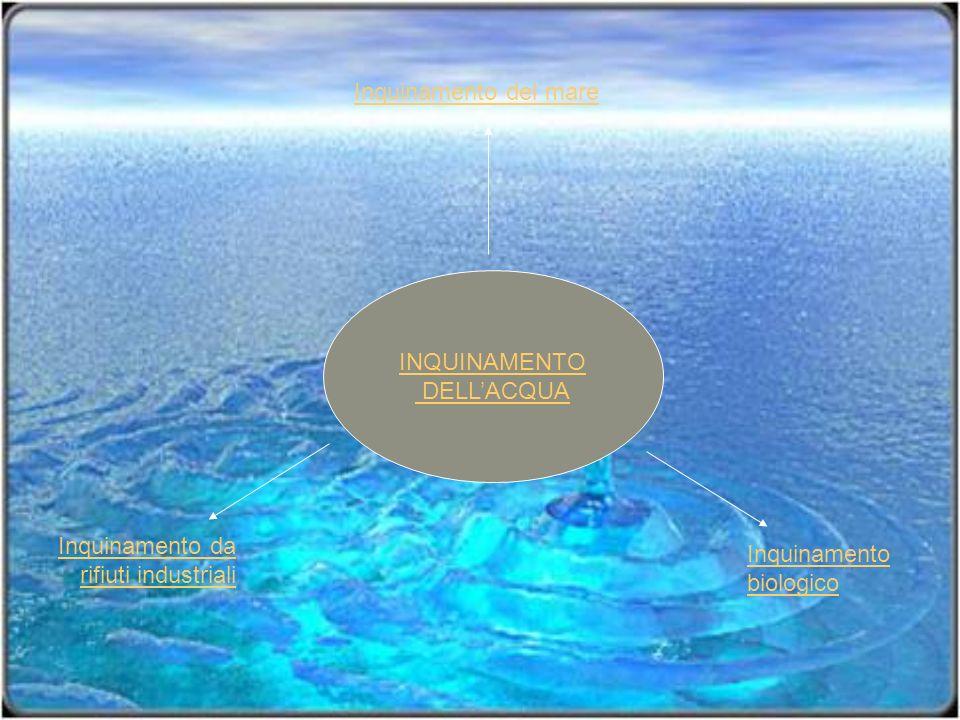 INQUINAMENTO DELLACQUA Inquinamento biologico Inquinamento da rifiuti industriali Inquinamento del mare