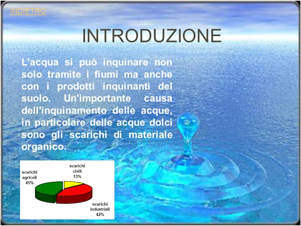 INTRODUZIONE L'acqua si può inquinare non solo tramite i fiumi ma anche con i prodotti inquinanti del suolo. Un'importante causa dell'inquinamento del