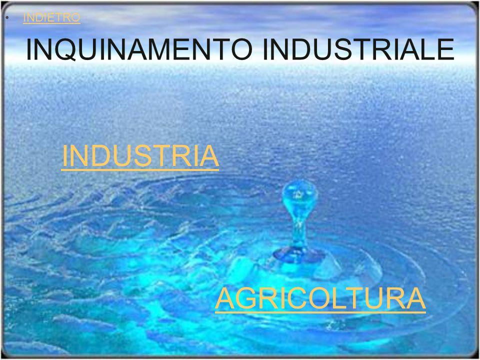 INQUINAMENTO INDUSTRIALE INDIETRO INDUSTRIA AGRICOLTURA