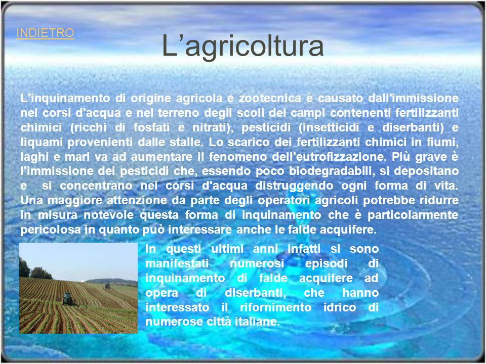 Lagricoltura INDIETRO L'inquinamento di origine agricola e zootecnica è causato dall'immissione nei corsi d'acqua e nel terreno degli scoli dei campi