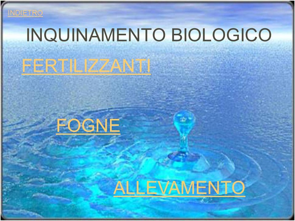 INQUINAMENTO BIOLOGICO FERTILIZZANTI ALLEVAMENTO FOGNE INDIETRO