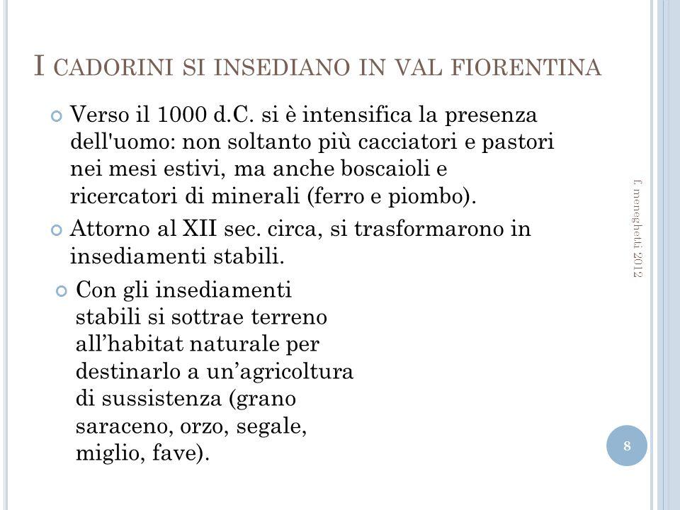 I CADORINI SI INSEDIANO IN VAL FIORENTINA 8 f.meneghetti 2012 Verso il 1000 d.C.
