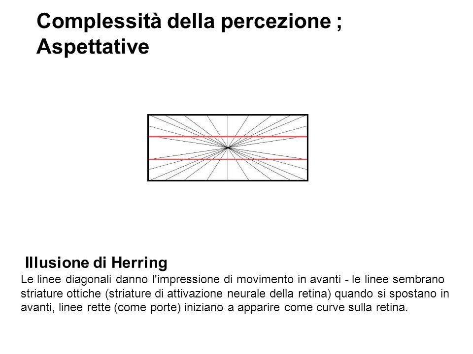 Illusione di Herring Le linee diagonali danno l'impressione di movimento in avanti - le linee sembrano striature ottiche (striature di attivazione neu