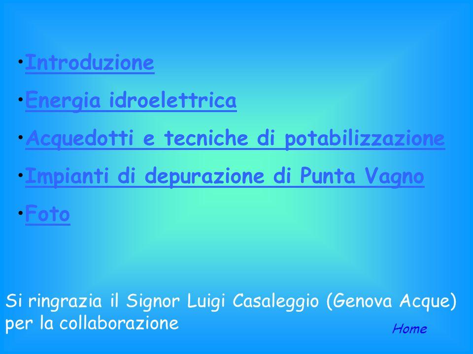 Liceo internazionale linguistico: Grazia Deledda Anno scolastico 2003-2004 FRESHWATER NETWORK PROJECT Sistema Acque Città di Genova Classi: 2A, 2E, 2G