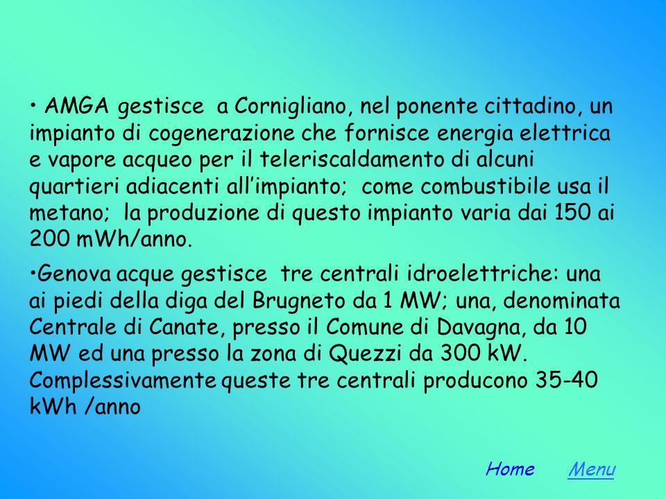CENTRALI IDROELETTRICHE Una centrale idroelettrica deve essere installata in prossimità di un bacino, anche artificiale, che raccolga lafflusso di mol