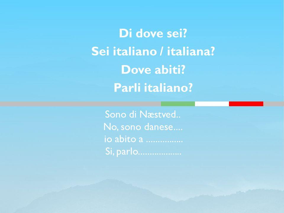 Sono di Næstved.. No, sono danese.... io abito a................ Si, parlo................... Di dove sei? Sei italiano / italiana? Dove abiti? Parli