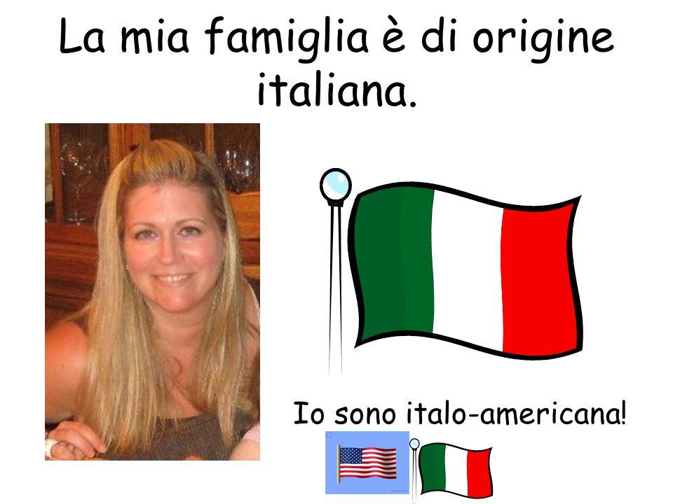 La mia famiglia è di origine italiana. Io sono italo-americana!