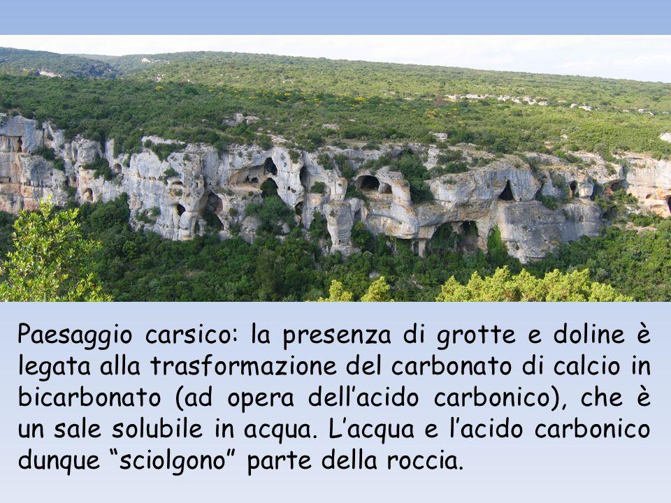 Paesaggio carsico: la presenza di grotte e doline è legata alla trasformazione del carbonato di calcio in bicarbonato (ad opera dellacido carbonico), che è un sale solubile in acqua.