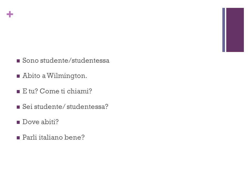 + Sono studente/studentessa Abito a Wilmington. E tu? Come ti chiami? Sei studente/ studentessa? Dove abiti? Parli italiano bene?
